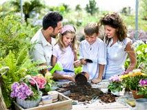 La familia se divierte en el trabajo de cultivar un huerto Imagen de archivo libre de regalías