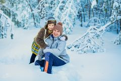 La famille dans les bois d'hiver photographie stock libre de droits