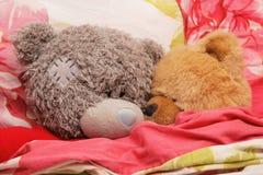 La famille de l'ours Images libres de droits