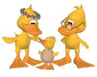 La famille du canard Photos libres de droits