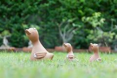 La famille du canard (maman et bébé) Photographie stock