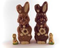 La famille du lapin Images libres de droits