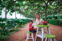 La famille mange des raisins Image libre de droits
