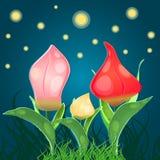La fantasia fiorisce i tulipani illustrazione vettoriale