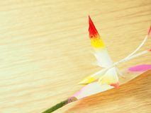 La farfalla fatta dalle foglie secche della palma nipa, dipinge multicolore sulle foglie bianche Fotografia Stock