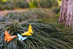 La farfalla tre sull'erba - lavoro di ufficio Fotografia Stock