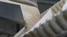 La farina d'avena del cereale si sbriciola nelle parti uguali in una macchina automatica moderna video d archivio