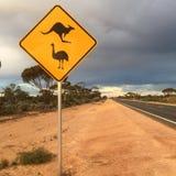 La fauna selvatica firma dentro il deserto australiano Fotografie Stock
