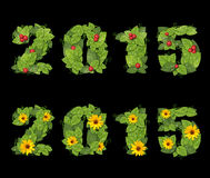 La fecha 2015 se alinea con las hojas verdes Imagen de archivo libre de regalías