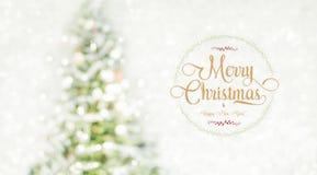 La Feliz Navidad y la Feliz Año Nuevo enrruellan con el te de oro del brillo Fotografía de archivo