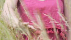 La femelle dans la robe simple caresse des oreilles de seigle de blé, femme que les contacts cultivent avec la main banque de vidéos