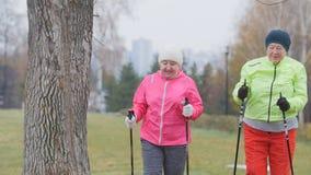La femme agée deux en parc d'automne ont la formation saine moderne - marche nordique Images libres de droits