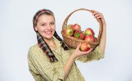 La femme aime les fruits naturels Fond blanc de style de jardini?re de fille de r?colte de pomme de jardinier d'agriculteur de po image stock