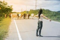 La femme asiatique assez jeune apprécient le jour d'été avec la vache sur une route Photos libres de droits