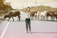 La femme asiatique assez jeune apprécient le jour d'été avec la vache sur une route Photographie stock