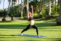 La femme attirante pratique le yoga en nature Photos stock