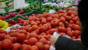 La femme choisit des tomates de légumes dans le supermarché clips vidéos