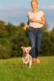 La femme court avec son chien hybride de terrier dehors Photographie stock libre de droits