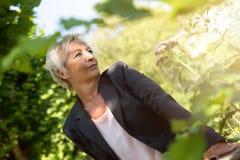 La femme d'affaires apprécient le soleil dans la nature Photographie stock