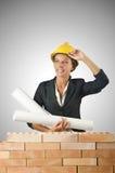 La femme d'affaires avec des dessins s'approchent du mur de briques Photos libres de droits