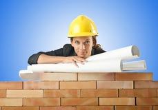 La femme d'affaires avec des dessins s'approchent du mur de briques Photos stock