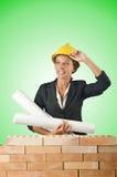 La femme d'affaires avec des dessins s'approchent du mur de briques Photographie stock