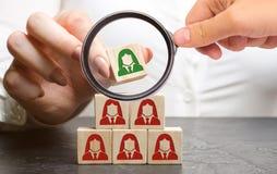 La femme d'affaires met les blocs en bois avec l'image des employés féminins Le concept de la gestion dans une équipe Ressources  photos libres de droits
