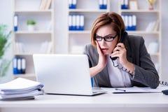 La femme d'affaires travaillant dans le bureau photographie stock libre de droits