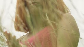 La femme d'une chevelure rouge calme touche des cultures de seigle de blé dehors, visage femelle sérieux lent clips vidéos