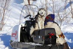 La femme dans des vêtements nationaux de Nenets et un chien Photographie stock