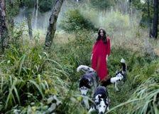 La femme dans la robe rouge avec l'arbre wolfs dans la forêt Image libre de droits