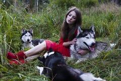 La femme dans la robe rouge avec l'arbre wolfs dans la forêt Photographie stock