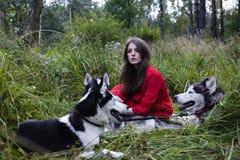 La femme dans la robe rouge avec l'arbre wolfs dans la forêt Photos libres de droits