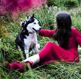 La femme dans la robe rouge avec l'arbre wolfs, forêt, le mystère p de chiens de chien de traîneau Photo stock
