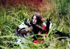 La femme dans la robe rouge avec l'arbre wolfs, forêt, le mystère p de chiens de chien de traîneau Image libre de droits