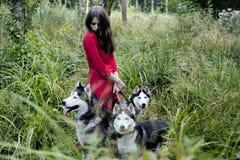 La femme dans la robe rouge avec l'arbre wolfs, forêt, portrait de mystère de chiens de chien de traîneau Photos libres de droits