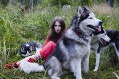 La femme dans la robe rouge avec l'arbre wolfs, forêt, portrait de mystère de chiens de chien de traîneau Photographie stock