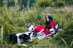 La femme dans la robe rouge avec l'arbre wolfs, forêt, le mystère p de chiens de chien de traîneau Photographie stock
