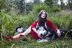 La femme dans la robe rouge avec l'arbre wolfs, forêt, le mystère p de chiens de chien de traîneau Photo libre de droits