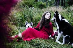 La femme dans la robe rouge avec l'arbre wolfs, forêt, le mystère p de chiens de chien de traîneau Image stock