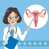 La femme de docteur enseigne et des éléments de l'utérus humain illustration stock