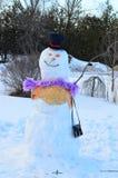 La femme de neige Image stock