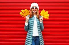 La femme de sourire d'automne de mode juge les feuilles jaunes d'un érable disponibles image stock