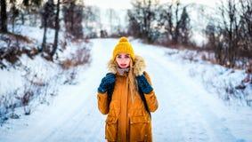 La femme de touristes de voyageur est dans les bois d'hiver sur une route neigeuse images libres de droits