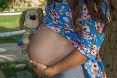 La femme enceinte avec des expositions se gonflent tout en tenant une peluche photos libres de droits