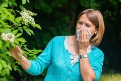 La femme est allergique au pollen Image libre de droits