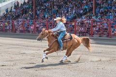La femme et le cheval galopent au deuxième baril au baril emballant la concurrence Photos libres de droits