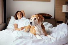 La femme et son chien de briquet rencontrent le matin dans le lit Image stock