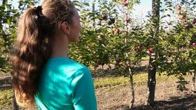 La femme examine le champ de pommiers clips vidéos