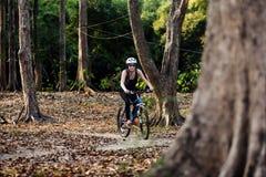 La femme fait un cycle en parc photo stock